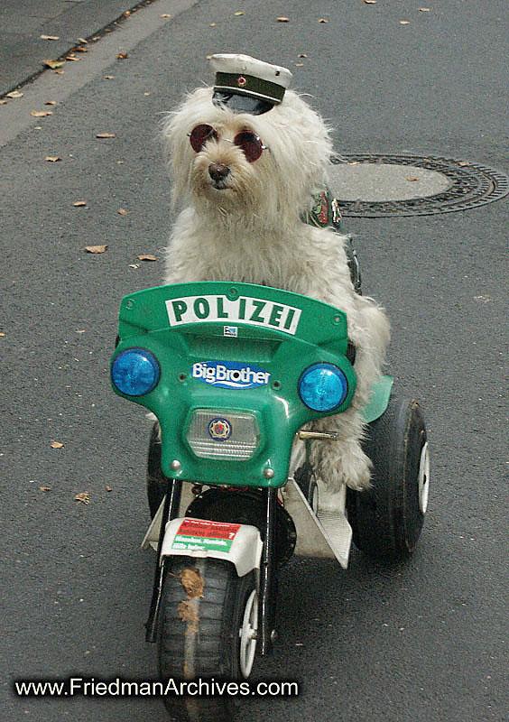 Police%20Dog