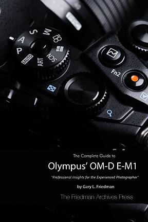 Olympus e m1 ebook by gary l friedman the complete guide to olympus om d e m1 by gary l friedman fandeluxe Choice Image