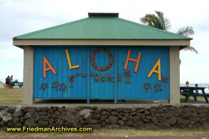 Aloha Blue Building