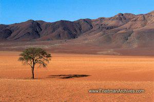 Namibia Images Namibiya Desert Landscape