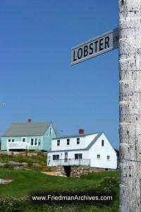 Lobster Lane