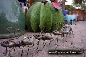 Sedona Marching Ants
