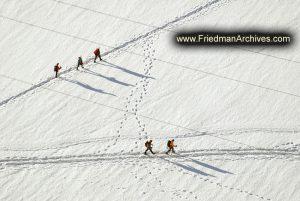 Snow Trekkers