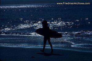Surfer Dudette