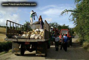 Truck Traffic Jam
