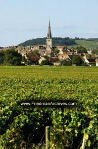 Village, Church, and Vineyard