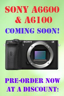 Sony Alpha 6100 and Alpha 6600 cameras