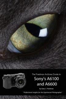 Sony A6600 A6100